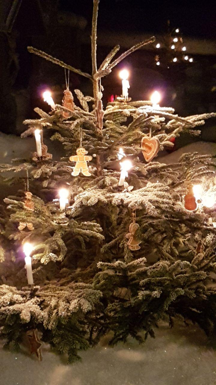 Frohe Weihnachten überall.Frohe Weihnachten überall Ferienwohnung Grainau Barbara Seufferth